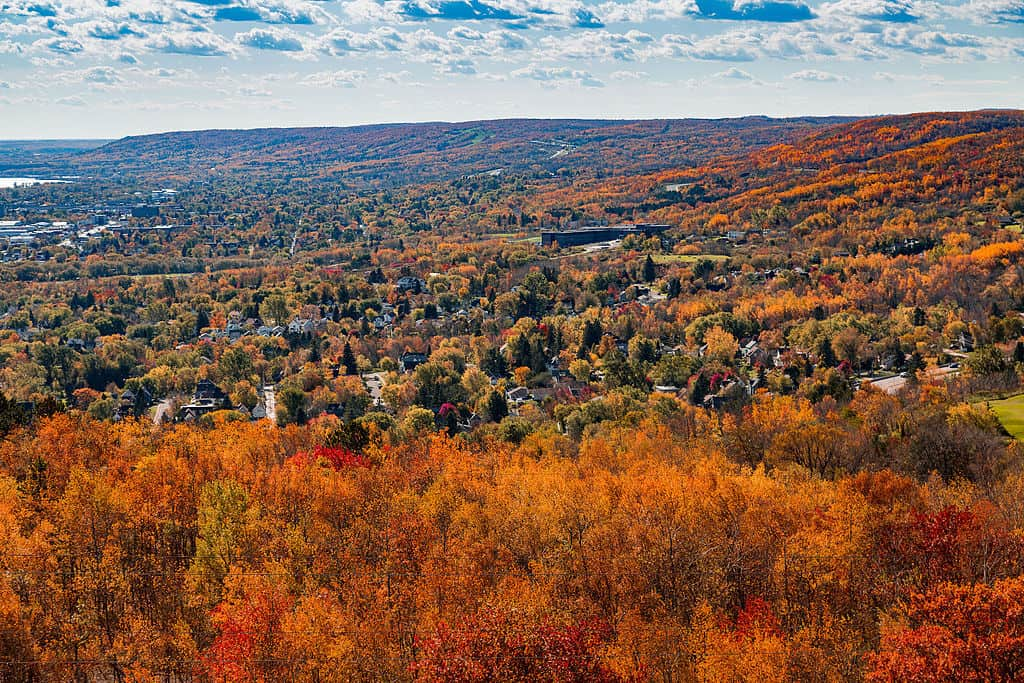 Duluth Minnesota Fall Colors View from Enger Tower