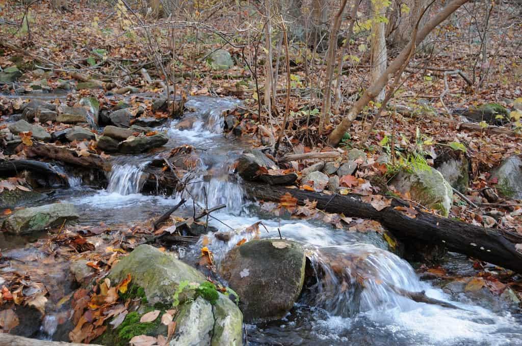 The Appalachian Trail in Maryland, Black Rock Creek