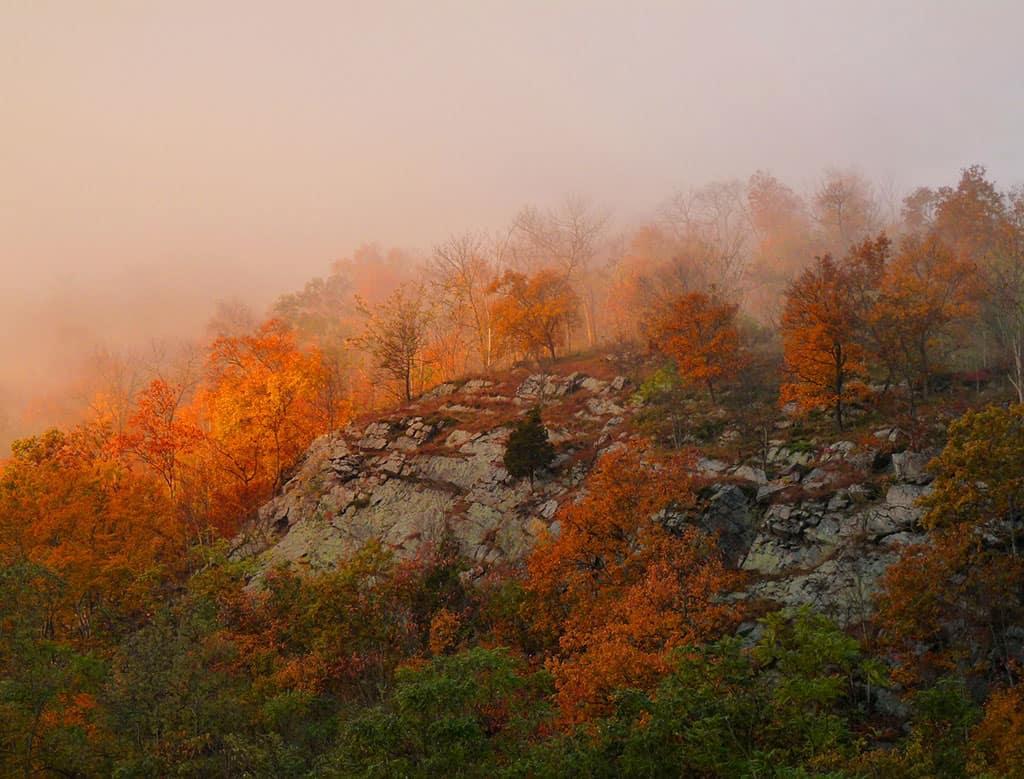Golden sunrise atop Mt Minsi in Pennslyvania