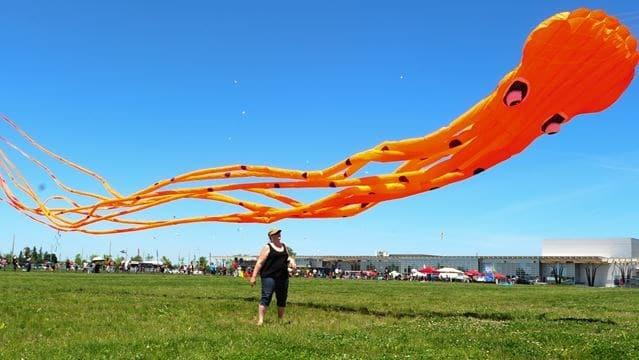 Brampton Kite Festival
