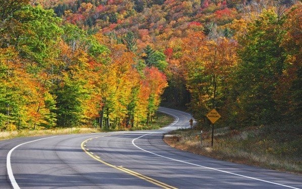 Kancamagus Highway - Best U.S Driving roads, Road trip Ideas.