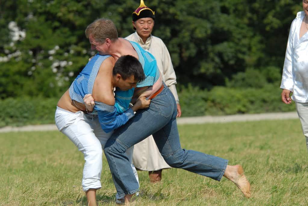 Mongolian wrestling naadam festival local