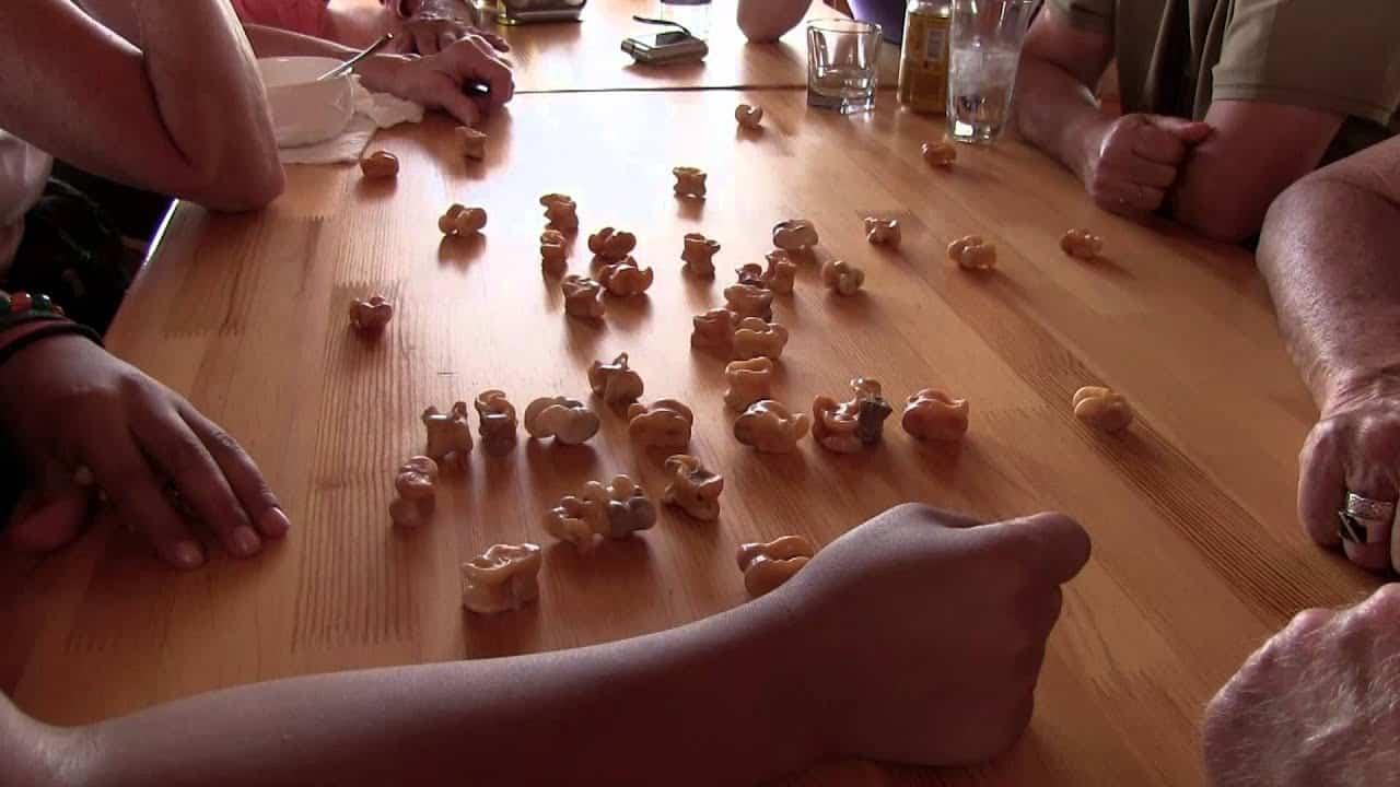 Homestay mongolia games.