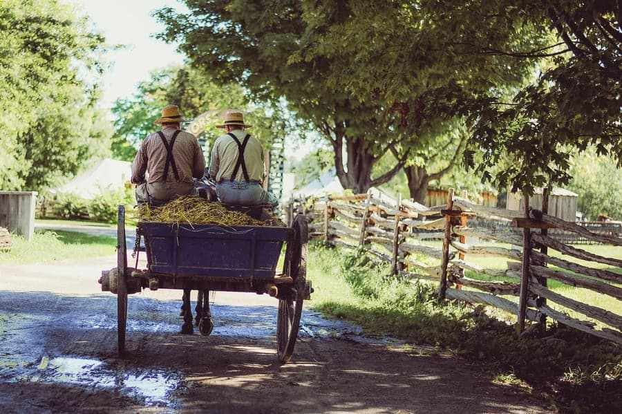 Amish Farming Traditions