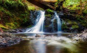 California State Park Waterfall