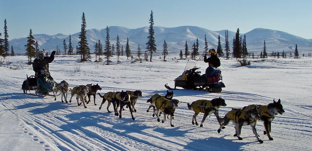 Dog Sledding at this great National Historic Trail. Iditarod, Frontier Trail