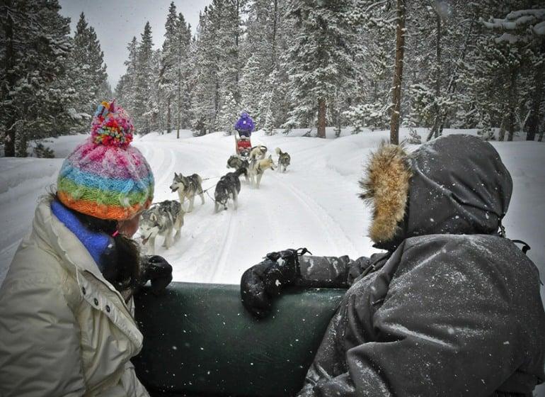 Good Times Dog Sledding Tour Operator, Alaska