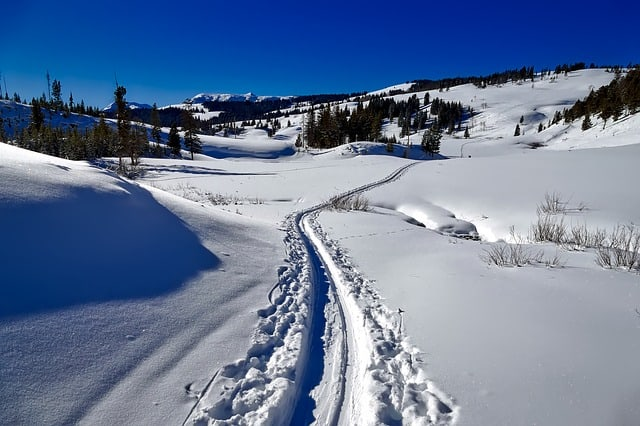 Yellowstone-Cross-Country-Ski-Trail