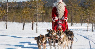 Yellowstone-Dog-Sledding-Tour-Christmas