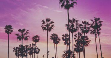 Miami Beach Venice Beach Artistic Photo Sunset