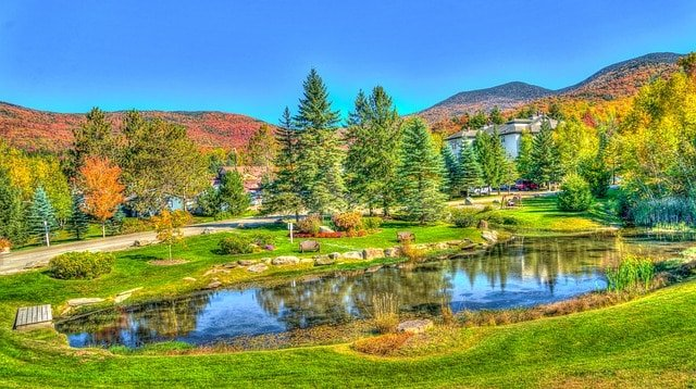 Vermont-Beautiful-Dog-sledding
