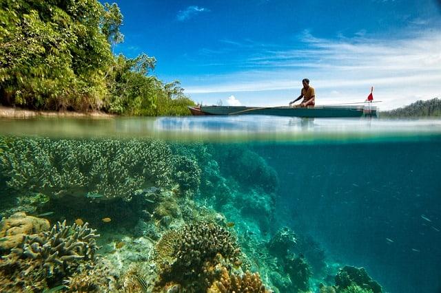 Pigeon Island Sri Lanka Scuba Reef