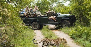 Minneriya -National-Park-Safari