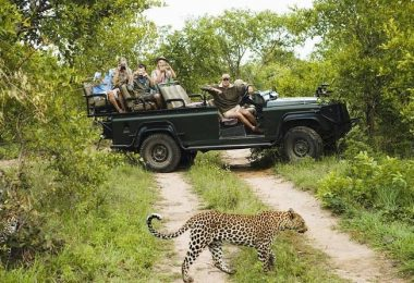 Wasgabuwa-National-Park-Safari