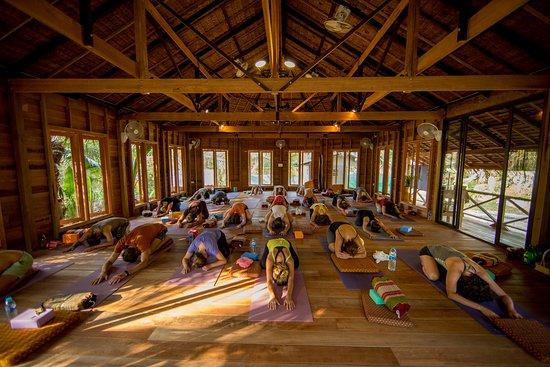 island-Yoga-Koh-Yao-Noi