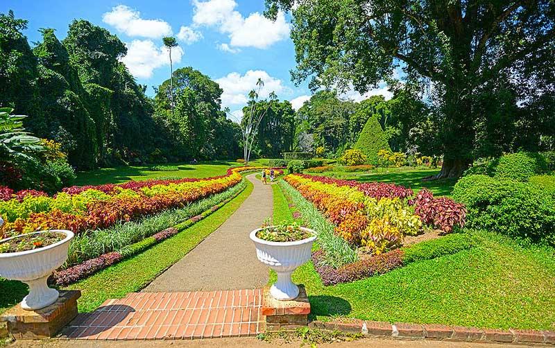 Botantical Gardens Peradeniya-KandySri Lanka