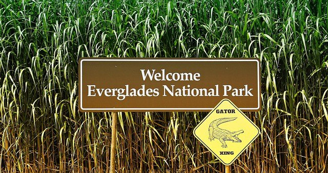 Everglades National Park Guide - Florida 7 Day Itinerary