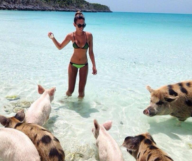 Bahamas on a Budget Vacation