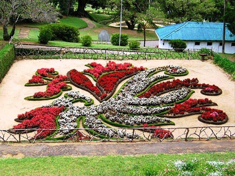 Hakgala Hanging Bontanical garden Sri Lanka
