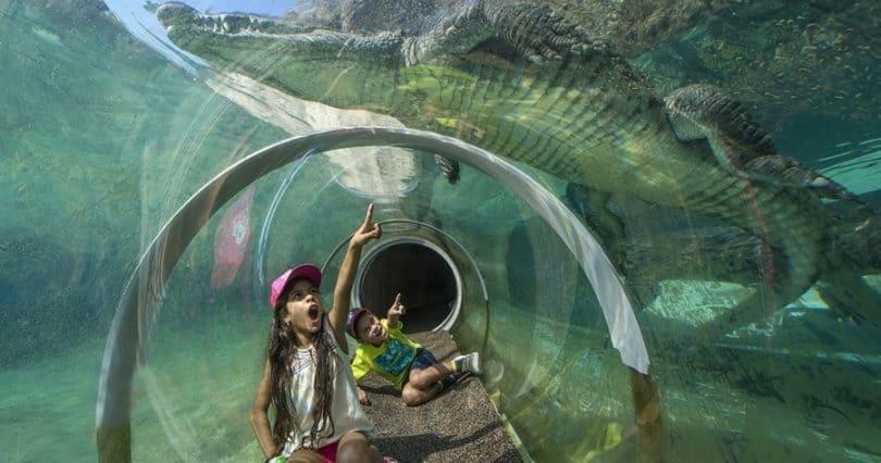 Miami Zoo Guide