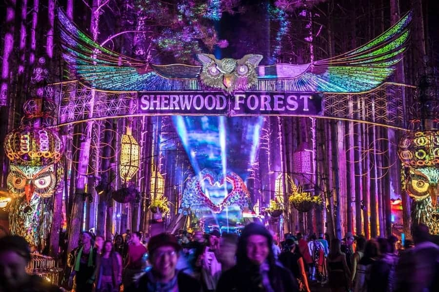 Michigan Electric Forest Festival
