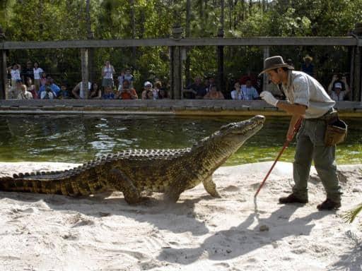 gatorland-Orlando Florida
