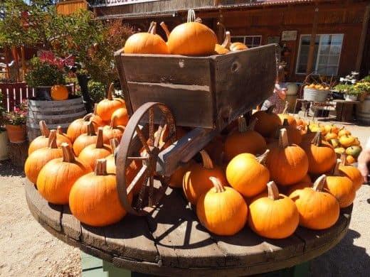 California- Jack Creek Farm