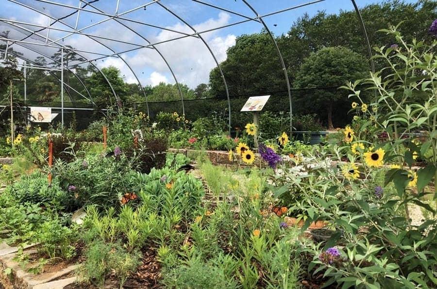 Daniel Stowe Botanical Garden 1