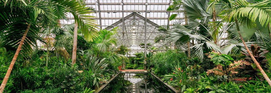 Garfield Park Conservatory Chicago itinerary
