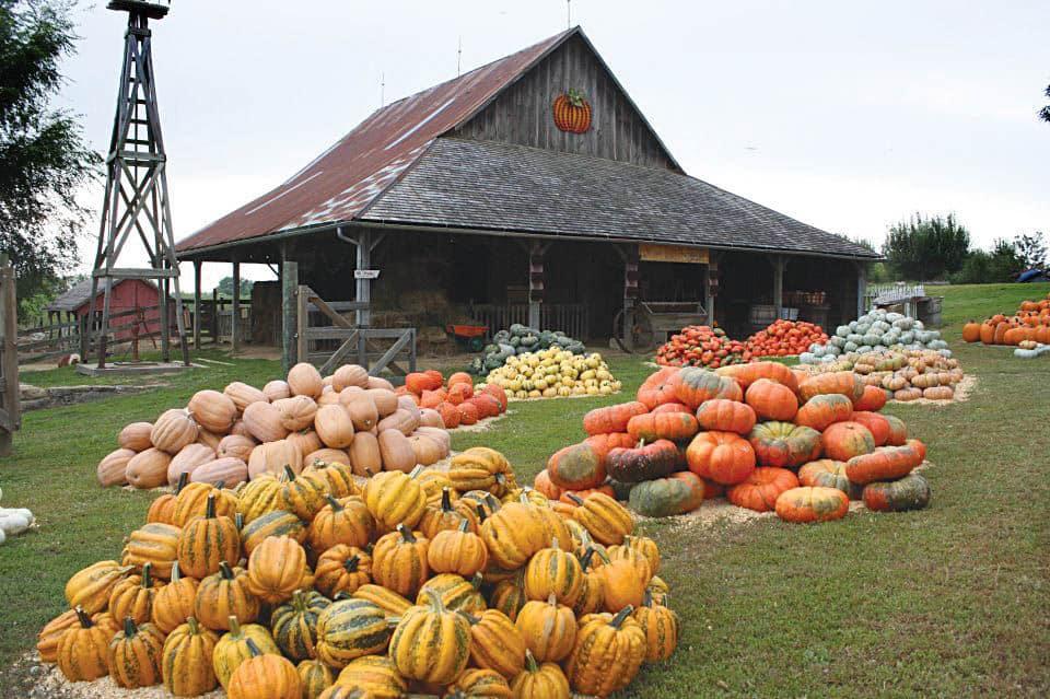 Missouri- Weston Red Barn Farm