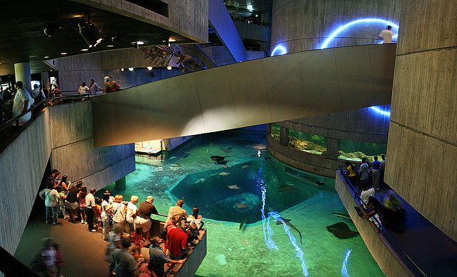 National Aquarium in Baltimore.