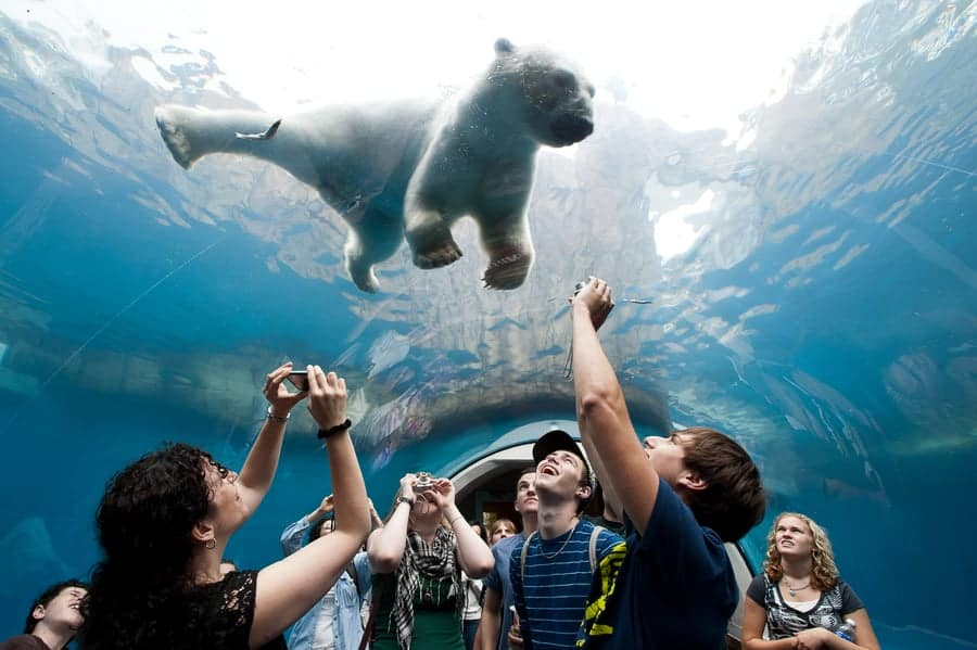 Pittsburgh Zoo & PPG Aquarium 1