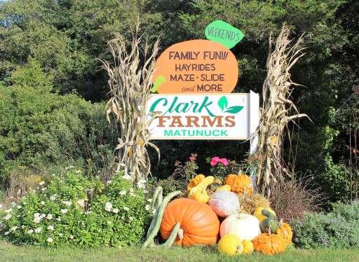 Rhode Island- Clark Farms, Matunuck