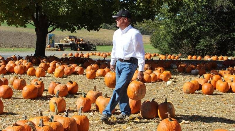 Tennesse Boyd's Pumpkin Patch:Corn Maze