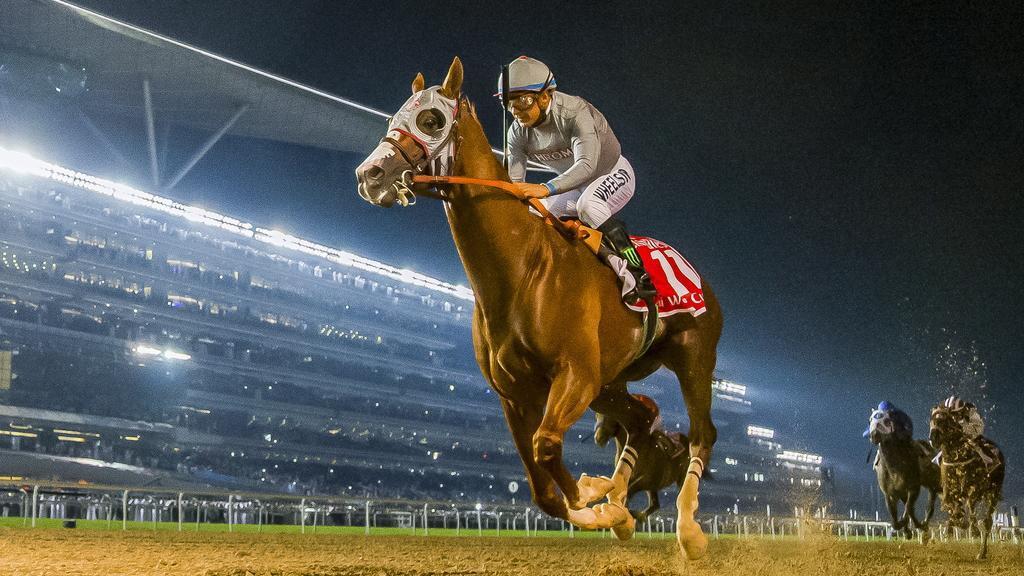Horse racing in Meydan.dubai