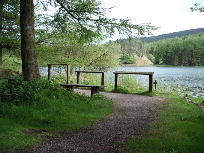 Macc-Forest-reservoir-view-with-benches-and-leaning-posts_116343063